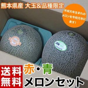熊本県産 大玉 赤肉・青肉メロンセット 各1玉(赤肉:クインシー 約1kg 青肉:肥後グリーン約1.3kg) 常温 送料無料|tsukijiichiba