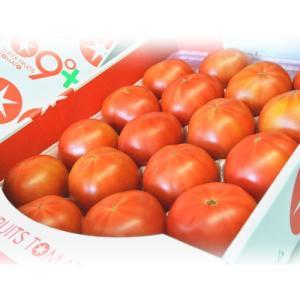 『スーパーフルーツトマト』 茨城県産 産地箱 約2.5kg(14〜28玉入) ☆ tsukijiichiba