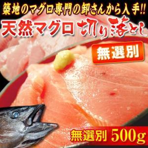 無選別 『天然マグロ』 切り落とし (メバチ・キハダ) 業務用500g!! ※冷凍 sea ○ tsukijiichiba