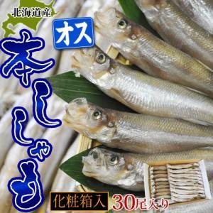 ししゃも シシャモ 柳葉魚 北海道産 本ししゃも オス30尾 冷凍|tsukijiichiba