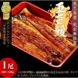 鹿児島産 うなぎ蒲焼「五匠鰻」約120g×1尾  ※冷凍 sea ☆|tsukijiichiba