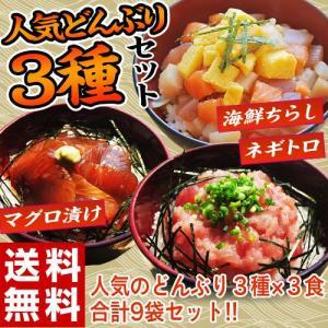 《送料無料》 『海鮮丼3種セット』 (鉄火丼・ネギトロ丼・海鮮ちらし丼 各3食) ※冷凍 sea ○|tsukijiichiba
