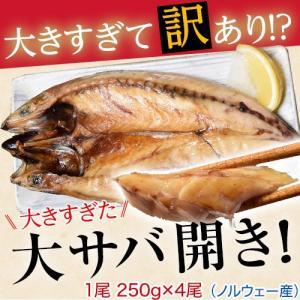 さば サバ 規格外 大きすぎた「大サバ開き」 4尾 冷凍|tsukijiichiba