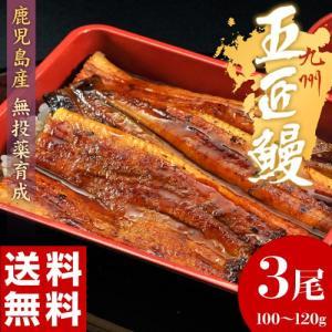 《送料無料》鹿児島産 うなぎ蒲焼「五匠鰻」 約120g×3尾 ※冷凍 sea ☆|tsukijiichiba