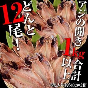 たっぷり12枚!鯵の開き 6枚入り×2箱(1kg以上) ※冷凍 sea ☆|tsukijiichiba