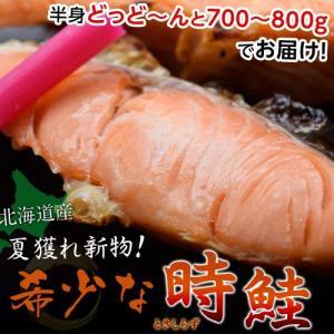 新物時鮭半身700〜800g ※冷凍 sea ☆|tsukijiichiba
