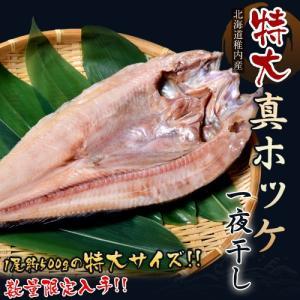 北海道稚内産「特大真ホッケ 開き」 1枚(約500g) ※冷凍 sea ☆ tsukijiichiba