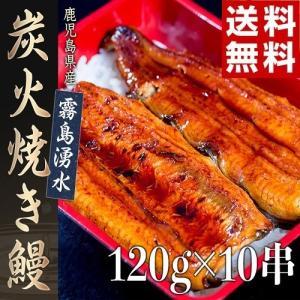 ≪送料無料≫鹿児島産 霧島湧水 炭火焼き鰻 120g×10串 ※冷凍|tsukijiichiba