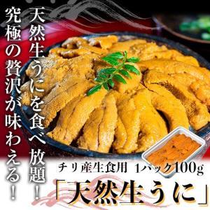 うに ウニ 生うに チリ産「天然生うに」100g 生ウニ 雲丹 海鮮 魚 軍艦 パスタ うに丼 ウニ丼 冷凍同梱可能 tsukijiichiba