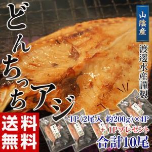 アジ 鯵 送料無料 山陰産 どんちっち あじ開き 2枚 200g ×4パック + 1パック 冷凍