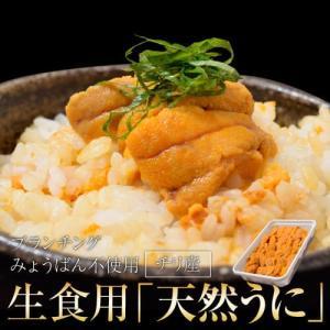 うに ウニ 雲丹 チリ産 天然うに 生食用 100g 冷凍同梱可能 tsukijiichiba