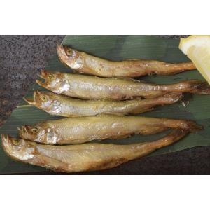 シシャモ 柳葉魚 北海道産 若ししゃも 200g ×2P ※冷凍 tsukijiichiba