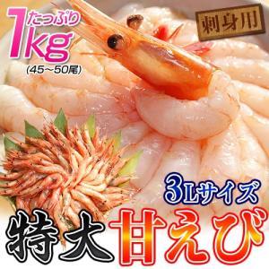 ロシア産 特大3Lサイズ 刺身用甘エビ 1kg(45〜50尾)※冷凍 sea ○|tsukijiichiba