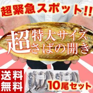 さば サバ 干物 送料無料 有頭サバ開き干し 特大5尾×2パックセット 1尾あたり250g以上 冷凍|tsukijiichiba