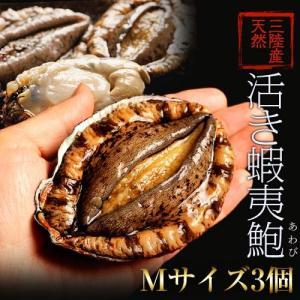 《送料無料》活・蝦夷アワビ(天然)計3個 Mサイズ(1個:140〜160g) ※冷蔵 sea ○ tsukijiichiba