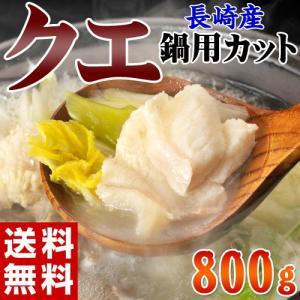 《送料無料》長崎県産 巨大クエ 30kgUP 鍋用カット 約800g ※冷凍 sea ☆