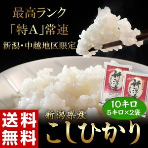 《送料無料》新潟県産「コシヒカリ」 白米 10kg(5kg×2袋) ○|tsukijiichiba