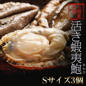 《送料無料》活・蝦夷アワビ(天然)計3個 Sサイズ(1個:100〜130g) ※冷蔵 sea ○ tsukijiichiba