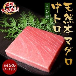 カナダ産 天然本マグロ 中トロ 約150g(1〜2サク) ※冷凍 sea ☆|tsukijiichiba