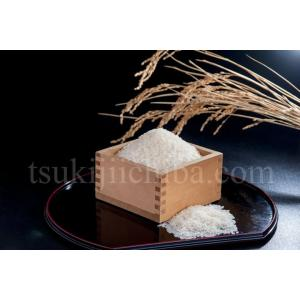 《送料無料》新潟県産米 「新之助」 白米 10kg(5kg×2袋) ※産地直送 ○|tsukijiichiba