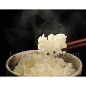 《送料無料》新潟県産米 「新之助」 白米 お試し2kg ※産地直送 ○|tsukijiichiba