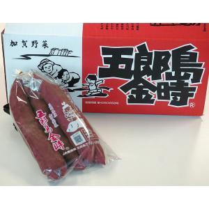 加賀伝統野菜 さつまいも 石川県産 「五郎島金時」 SSサイズ限定 秀品 約500グラム×2袋(約1キロ)|tsukijiichiba