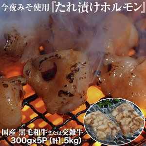 今夜みそ使用『たれ漬けホルモン』黒毛和牛または交雑牛 国産 300g×5P(計1.5kg) ※冷凍 送料無料 tsukijiichiba