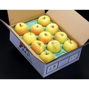 黄色のりんご『トキ』青森県産 風袋込約3kg(7〜12玉入)×2箱 岩木山りんご生産出荷組合 産地箱 ※常温 送料無料 tsukijiichiba