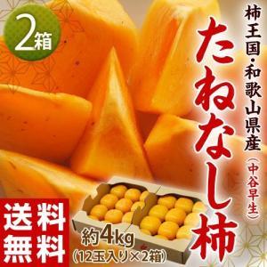 《送料無料》 和歌山産 たねなし柿(中谷早生)秀品 12個入り×2箱 (1箱:約2kg) frt ○ tsukijiichiba