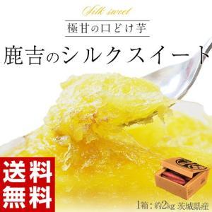 さつまいも 送料無料 茨城県産 鹿吉のシルクスイート 1箱 約2kg|tsukijiichiba