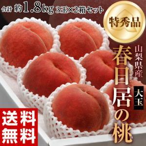 桃 もも ギフト 山梨県産  春日居の桃 特秀品 大玉 3玉...