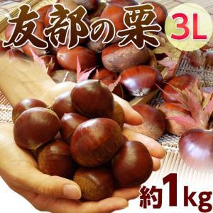 栗 くり クリ 茨城県産 友部の栗 3L 約1キロ(35粒前後) ※冷蔵|tsukijiichiba
