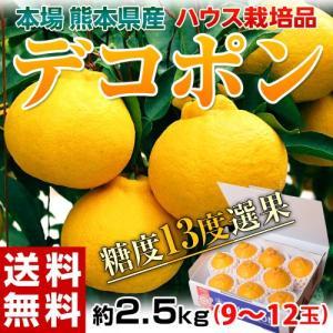 《送料無料》熊本産 ハウスデコポン 化粧箱 5〜8玉 約2キ...