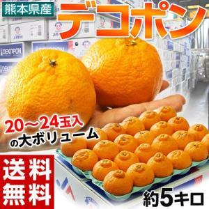 《送料無料》熊本産「デコポン」小玉 約5kg(20〜24玉)...