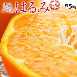 《送料無料》愛媛 三崎産 「はるみ みかん」 優品 L〜3L 約5kg frt ○