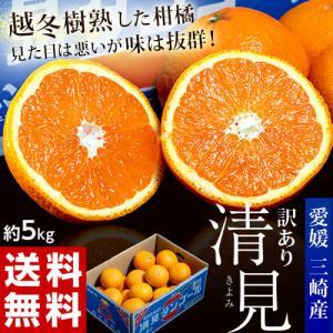 《送料無料》柑橘 愛媛・三崎産 「シュガースポット清見オレンジ(訳あり)」 M〜4L 約5kg ※常温 frt ☆