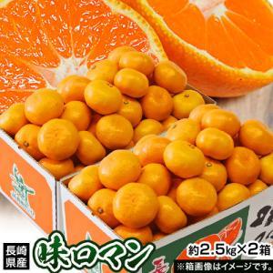 みかん 送料無料 長崎県産みかん 味ロマン 約2.5kg (2S〜M)×2箱 豊洲市場 【糖度12度選別】|tsukijiichiba
