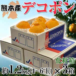《送料無料》熊本産「デコポン」4〜6玉 約1.2kg×3箱 ...