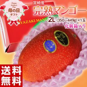 【母の日ギフト 2018】宮崎県産  完熟マンゴー  2Lサ...