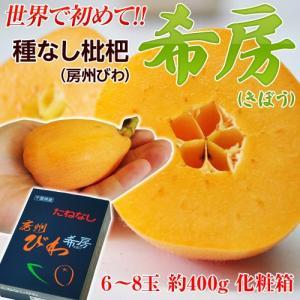 千葉県産 種なしびわ「希房」 6〜8玉 約400g ※冷蔵 frt☆