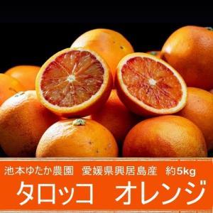 《送料無料》愛媛県・ごご島産 池本ゆたか農園のブラッドオレンジ(タロッコ)SS〜S 約2.5キロ frt ☆