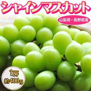 葡萄 ぶどう 山梨県または長野県産 ハウス栽培 シャインマスカット 1房 約400g ※冷蔵|tsukijiichiba