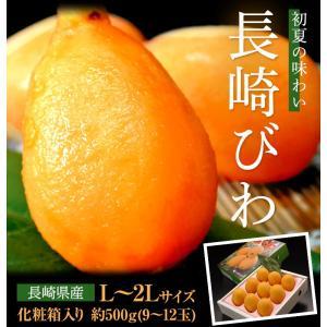 長崎県産「長崎びわ」 化粧箱 L〜2Lサイズ(9〜12玉) ※冷蔵 frt ○|tsukijiichiba