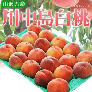 《送料無料》山形県産 川中島白桃 約5kg(13〜25玉) ...