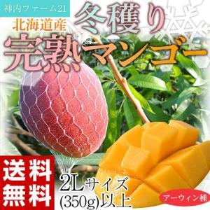 《送料無料》神内ファーム21『冬穫り完熟マンゴー』 北海道産 2L(350g)以上 frt ☆ tsukijiichiba