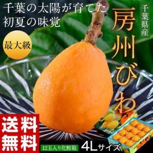 千葉県産 『房州びわ』 最大級4Lサイズ12玉入り ※冷蔵 ☆