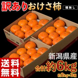 柿 かき 新潟県産 訳あり おけさ柿 簡易包装 約2kg (9玉前後)×3箱 ご自宅用 送料無料|tsukijiichiba