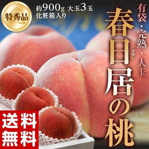 《送料無料》山梨県産 「春日居の桃」《特秀品》約900g(大...