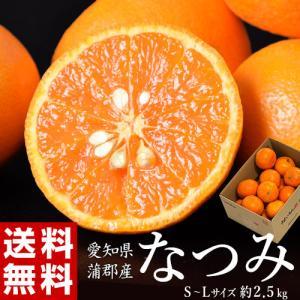 柑橘 愛知・蒲郡産 『なつみ(南津海)』 約2.5kg バラ詰め M〜Lサイズ 送料無料|tsukijiichiba