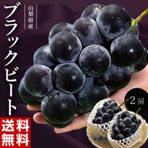 葡萄 ぶどう 黒葡萄 山梨県産 ブラックビート2〜3房 合計約1.2kg 送料無料 ※冷蔵|tsukijiichiba